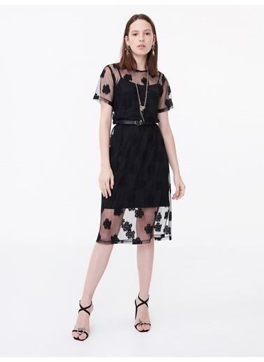 Twist Çift Parça Transparan Form Elbise Siyah